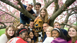 Penn State Accepted Students