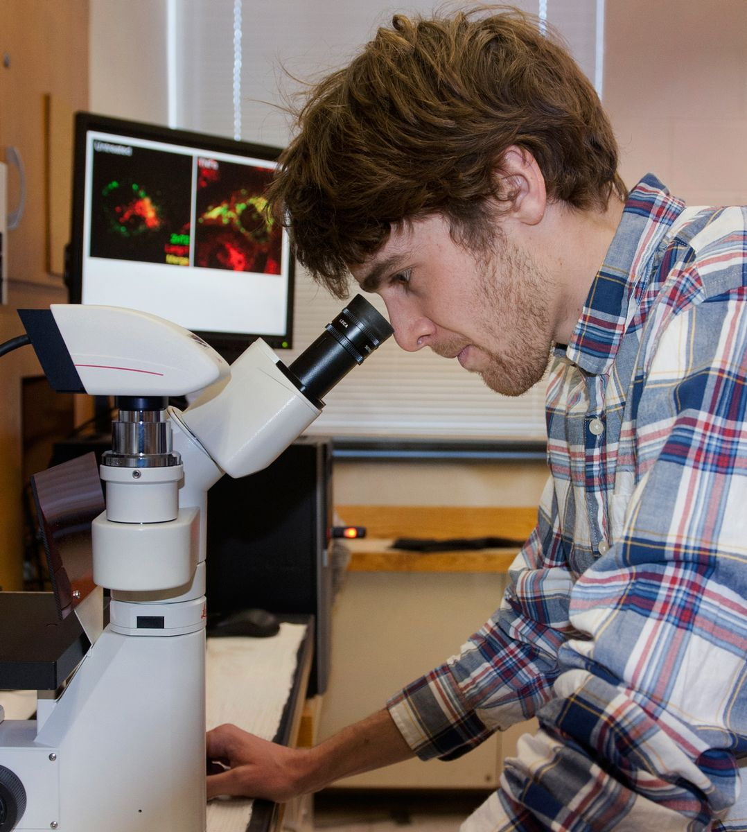 Penn State student in laboratory at microscope